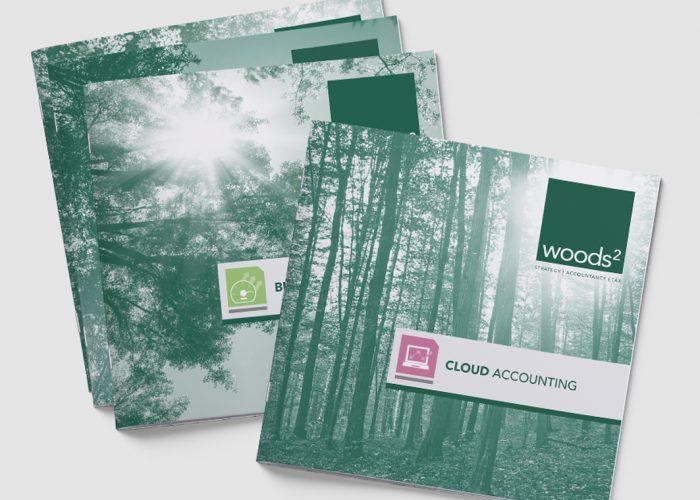 leaflet design, leave piece, print design